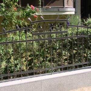 Stalowe ogrodzenie Lamo